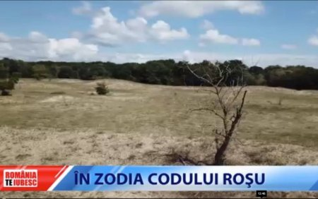 Desertificarea ameninta Romania. Țara noastra va fi mult mai expusa <span style='background:#EDF514'>TANTARI</span>lor care aduc virusi