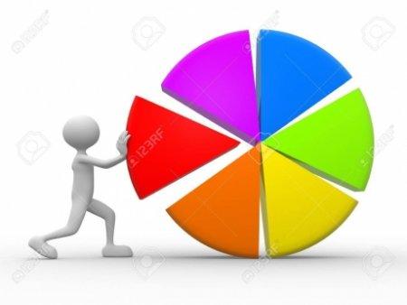 PNL se topeste in sondaje: Liberalii au pierdut 18% la guvernare