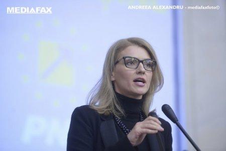 Alina Gorghiu cere sanctionarea parlamentarilor AUR: Florin Roman a cazut victima unor gesturi violente