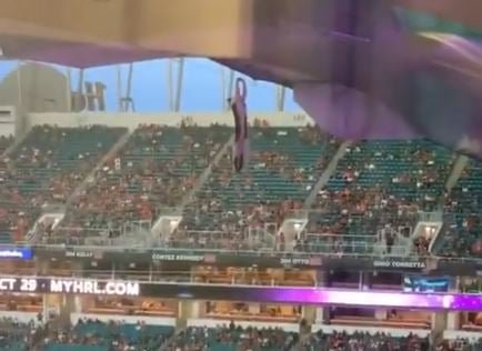 Imagini virale cu o <span style='background:#EDF514'>PISICA</span> salvata de suporterii aflati pe un stadion din SUA, dupa ce a cazut din tribune
