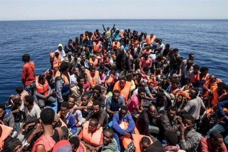 Peste 200 de milioane de persoane vor fi fortate sa migreze din cauza schimbarilor climatice