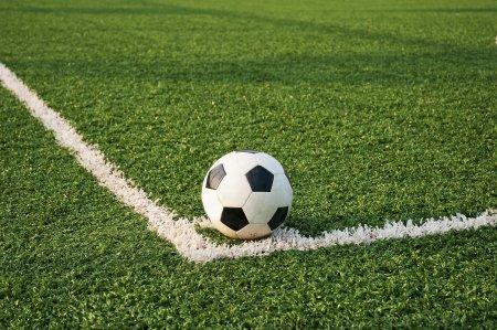 Bani grei in fotbal! Cat castiga Petrescu, Iordanescu si Reghecampf? Acestea sunt contractele lor