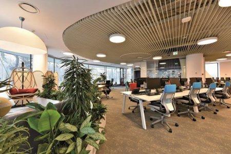 Cum revin corporatistii la birou: Ce strategii sunt implementate pentru a facilita accesul la un nou tip de mediu de lucru