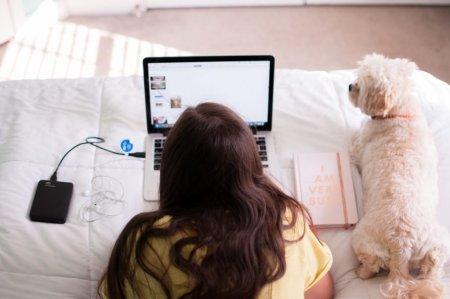 Dedesubturile muncii de acasa. Implicarea securitatii cibernetice