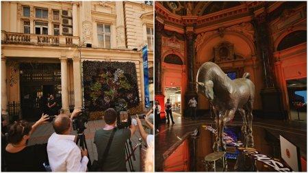 Opere de arta in valoare de 9.000.000 de euro, pe o straduta din Bucuresti