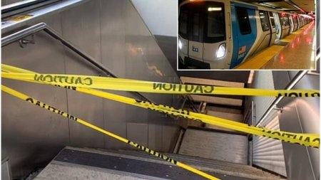 O femeie a murit dupa ce lesa <span style='background:#EDF514'>CAINE</span>lui pe care o avea prinsa de talie a tras-o pe sina metroului care pleca din statie