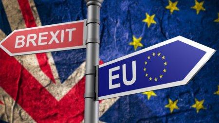 Ar putea urma si alte Brexituri daca <span style='background:#EDF514'>BULA</span> de la Bruxelles nu evolueaza?