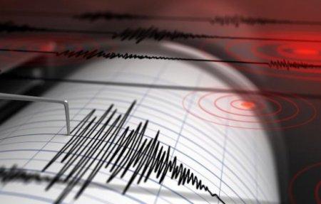 Un cutremur care s-a resimtit puternic a avut loc in China