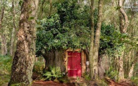 O casa care arata exact ca a lui Winnie de Plus poate fi inchiriata cu 95 de lire pe noapte. Unde este situata. <span style='background:#EDF514'>GALERIE FOTO</span>