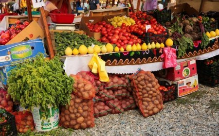 Proiect de lege: cosul minim de consum sa fie element unic de stabilire a salariului minim