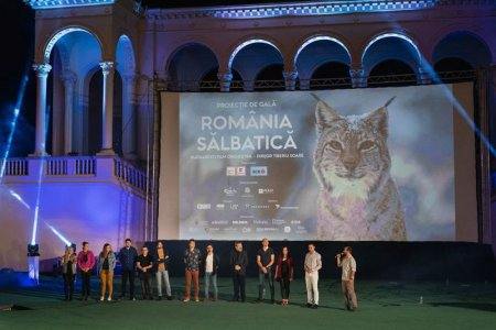 Romania Salbatica - de azi in cinematografele din toata tara!