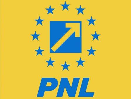"""Ludovic Orban nu a fost de acord cu modificarea siglei PNL: """"O propunere daunatoare"""""""