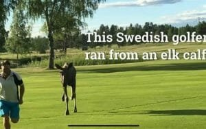 Glume pe seama presedintelui Iohannis, dupa ce a invitat romanii sa faca golf:
