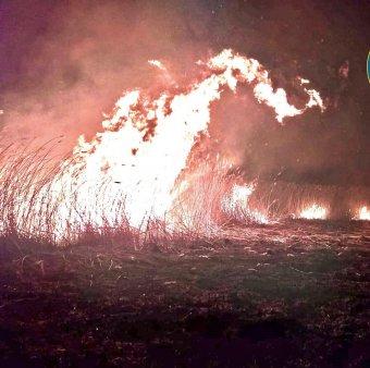 Craiova: Incendiu in Hipodromul din Parcul Nicolae Romanescu