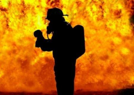 VIDEO | Incendiu in <span style='background:#EDF514'>PARC</span>ul Romanescu din Craiova. Precizarile primarului Lia Olguta Vasilescu