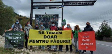 Protest al activistilor de mediu la <span style='background:#EDF514'>SUCEAVA</span>, unde un activist si doi jurnalisti au fost batuti. Participantii solicita MAI sa trateze cazul cu maxima seriozitate