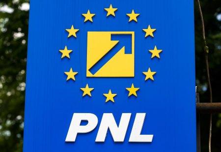 Lovitura totala pentru PNL! Cade sub 20%. PSD e primul in preferintele romanilor