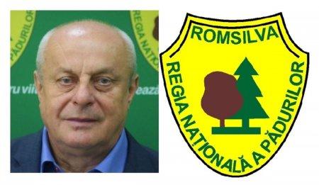 EXCLUSIV. Directorul general adjunct al Romsilvei, Cezar Raduta, a retrocedat ilegal 120 ha de padure din jurul Bucurestiului