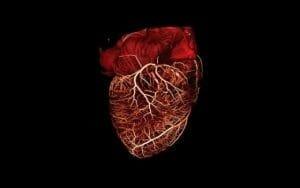 O inima a calatorit 1400 de km din Transilvania la Torino si a salvat o viata