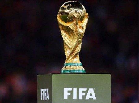 FIFA pregateste o lovitura - Cupa Mondiala, din doi in doi ani
