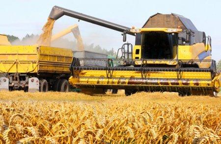 ZF Agropower. Unde sunt recoltele record de cereale anuntate de Ministerul Agriculturii? <span style='background:#EDF514'>FERMIERII</span> spun ca in silozurile lor nu se regasesc: Pentru a ajunge la 11 milioane de tone de grau avem nevoie de apa, asa ca Ministerul Agriculturii ar trebui sa refaca infrastructura principala de irigatii si o sa ajungem la cifrele pe care le raporteaza astazi