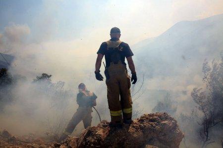 Incendii de padure in apropiere de capitala Greciei. Peste 100 de pompieri si voluntari se lupta cu flacarile
