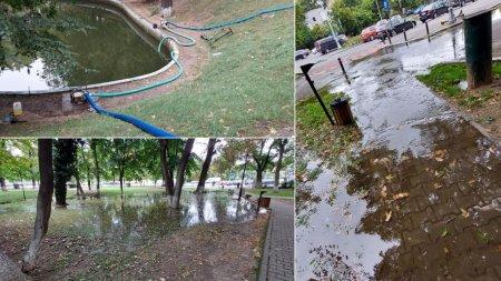 Radu Tudor: Imbecilitatea celor de la parcuri si gradini: scot apa dintr-un lac mic si o imprastie pe alei