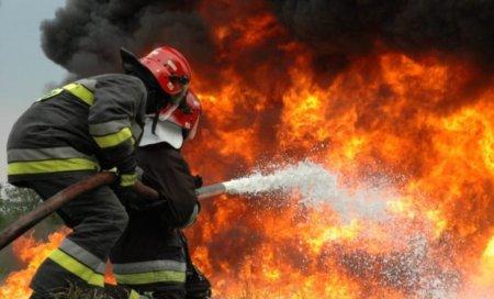 Incendiu de proportii in Parcul Tetarom, in Cluj-Napoca: Fumul este vizibil in tot orasul