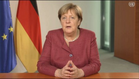 FOTO. Cum arata si cat costa ursul de plus care seamana cu Angela Merkel
