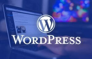 De ce sa alegi <span style='background:#EDF514'>GAZDUIRE</span> WordPress pentru website-ul tau?