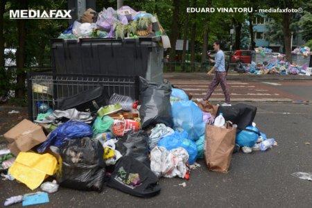 Scandalul gunoaielor din Sectorul 1: Primaria a obtinut o victorie in instanta