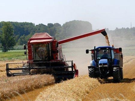 ZF Agropower. Productia-record de cereale anuntata de Ministerul Agriculturii nu se regaseste in silozurile fermierilor. Un fermier din <span style='background:#EDF514'>BRAILA</span>: Lucrurile sunt in ceata, pentru ca Ministerul Agriculturii nu are un sistem bine pus la punct, astfel incat sa faca previziuni sau sa adune informatiile exacte din piata. A fost un an cu productii corecte, nu extraordinare