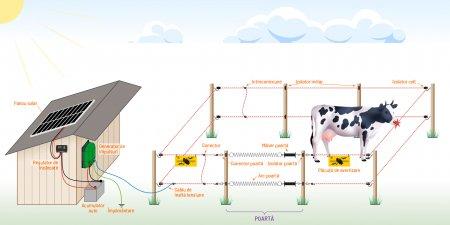 De ce sa alegi garduri electrice cu panou solar in schimbul gardurilor clasice?