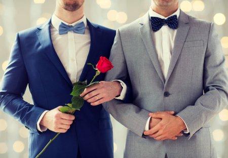 Casatoriile intre persoane de <span style='background:#EDF514'>ACELASI SEX</span>. Elvetia organizeaza referendum duminica