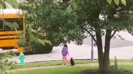 Prietenia dintre o fetita si pisica ei, virala pe internet. Felina isi conduce in fiecare zi <span style='background:#EDF514'>STAPANA</span> la autobuzul scolar