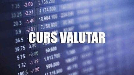 Curs valutar vineri, 24 septembrie. Moneda nationala face fata cu greu