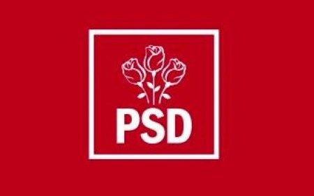 PSD, plangere impotriva congresului PNL: Pune in pericol sanatatea publica din intreaga tara