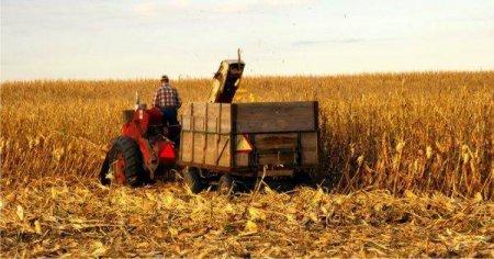 Alianta pentru Agricultura atrage atentia partidelor parlamentare cu privire la situatia furnizorilor vuilnerabili de produse agro-alimentare