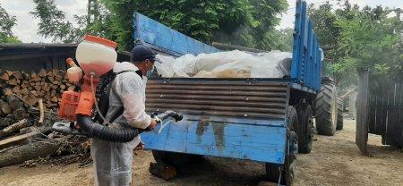 Romania a ajuns la 620 focare de pesta porcina africana. Ialomita si Teleorman, judetele cele mai afectate