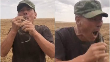 Un barbat din Rusia <span style='background:#EDF514'>A MURIT</span> dupa ce si-a bagat o vipera in gura si aceasta l-a muscat de limba