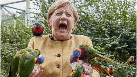 Angela Merkel a fost