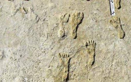 Amprente cu o vechime de 23.000 de ani rescriu istoria prezentei umane in America