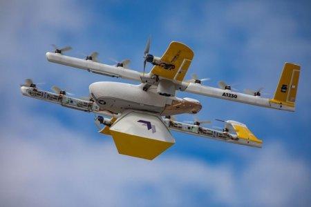 Corbii au intrerupt un serviciu de livrare cu drone la domiciliu din Australia, dupa ce a atacat in aer mai multe dispozitive