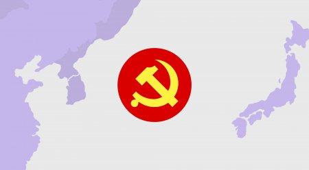 Victorie surprinzatoare: Locul unde Partidul Comunist a invins!