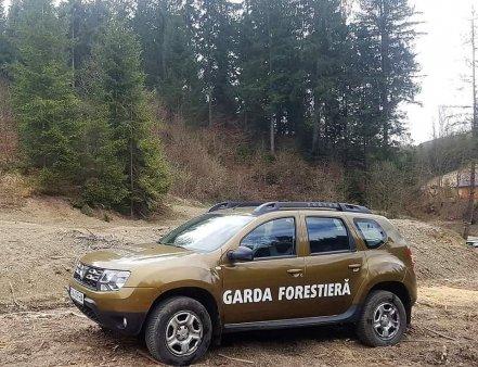 Garda Forestiera Suceava gaseste nereguli in padurea unde au fost batuti jurnalistii, dupa ce in urma cu o saptamana nu a observat nimic