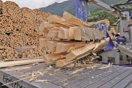 Semnal de alarma pentru jumatate de tara: lemnul de foc s-a scumpit cu 30% in cea mai complicata iarna energetica a Romaniei. In unele zone, cantitatile nu ajung. Intram in criza. Preturile sunt la cer