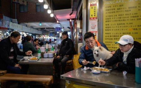 Presedintele Coreei de Sud vorbeste despre interzicerea consumul de carne de caine. Ce parere au oamenii