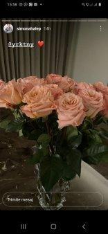 Ce cadou a primit Simona Halep de la sotul Toni Iuruc. La nivel de antrenori, sportiva se intoarce cu 8 ani in urma