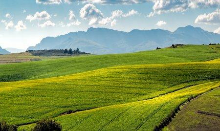 EXCLUSIV. Pactul verde european starneste ingrijorare in randul fermierilor romani. Care le sunt temerile