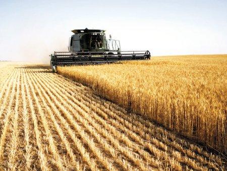 ZF Agropower. Liceele agricole trebuie sa fie pe radarul autoritatilor si al parintilor pentru ca 20% din locurile de munca create pana in 2030 vor fi in agricultura. In prezent, Romania are 57 de licee cu profil preponderent agricol, fata de 120 acum doua decenii